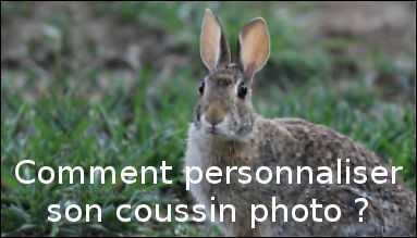 Comment personnaliser son coussin photo ?
